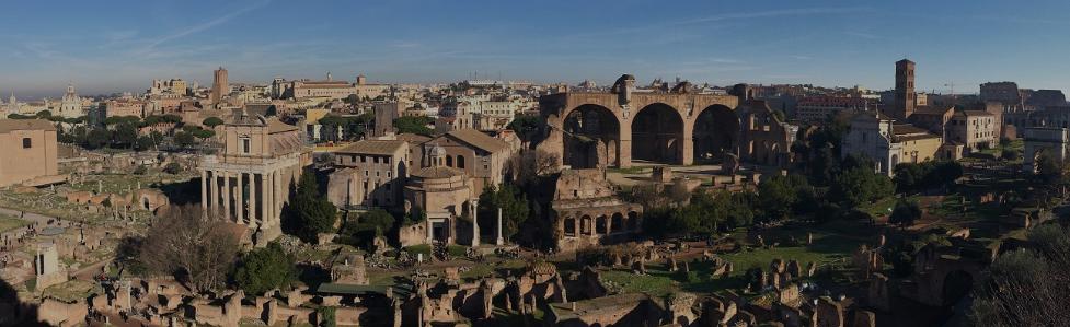 Visite guidate culturali a Roma, con il foro romano, il Palatino ed il Colosseo, con guida archeologa